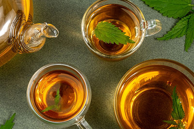 Should You Be Drinking Green Tea Everyday?